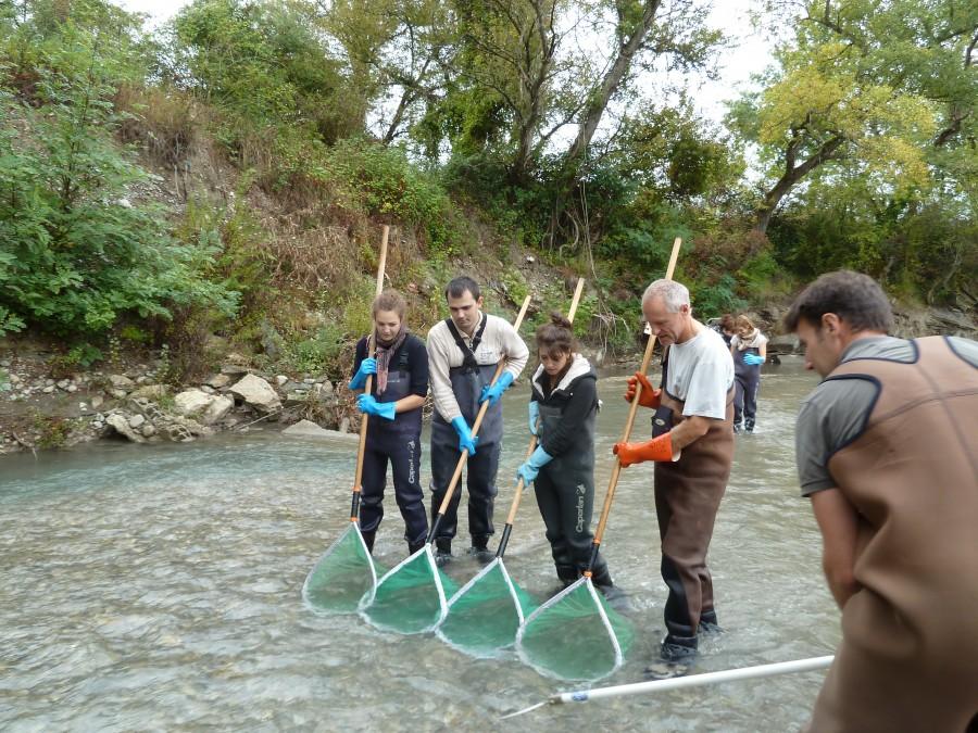 La pêche électrique en photo (Photo de Rémi Chappaz)